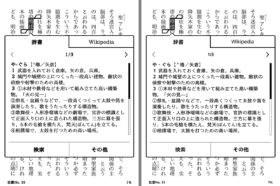Kindle_min_dic